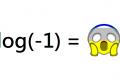Perché non si può fare il logaritmo di un numero negativo?